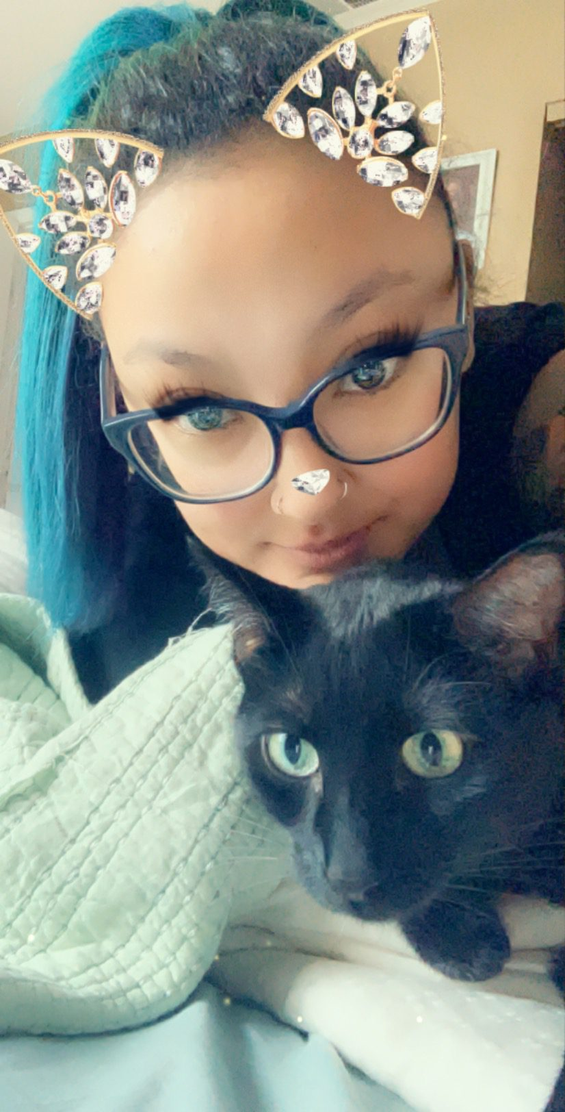trusted cat sitter, About Us, The Comforted Kitty