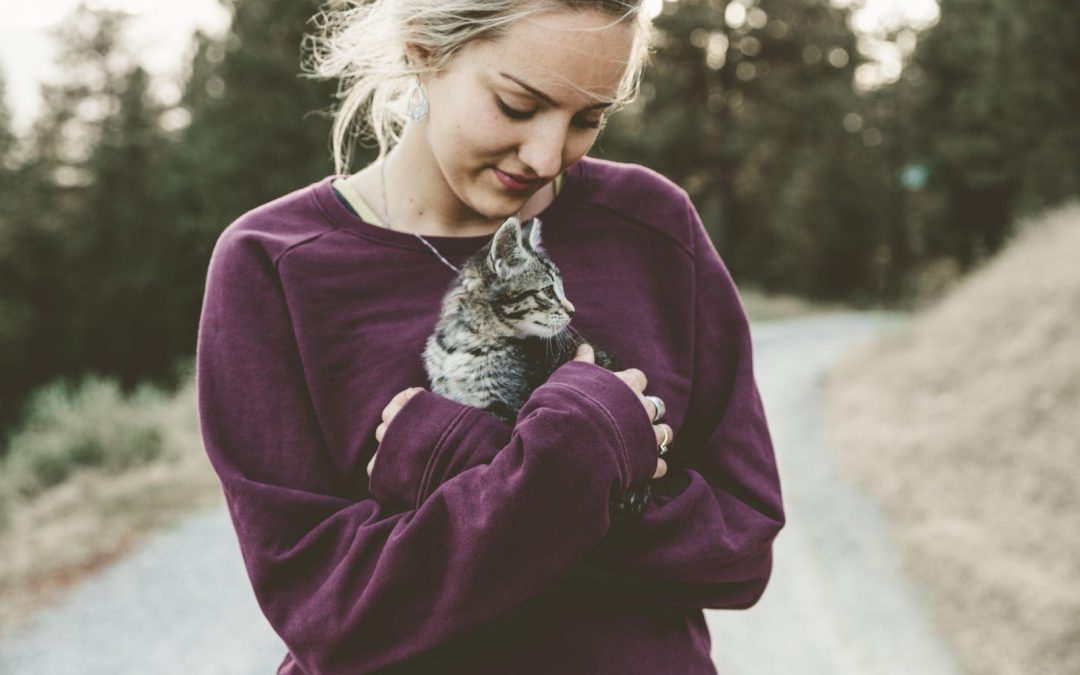 How You and Your Kids Can Help Cats in Marin County