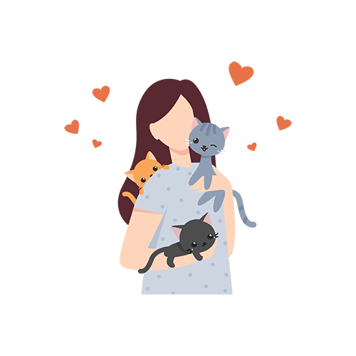 , Best Cat Sitting Services – In Home Cat Sitters Near Me, The Comforted Kitty