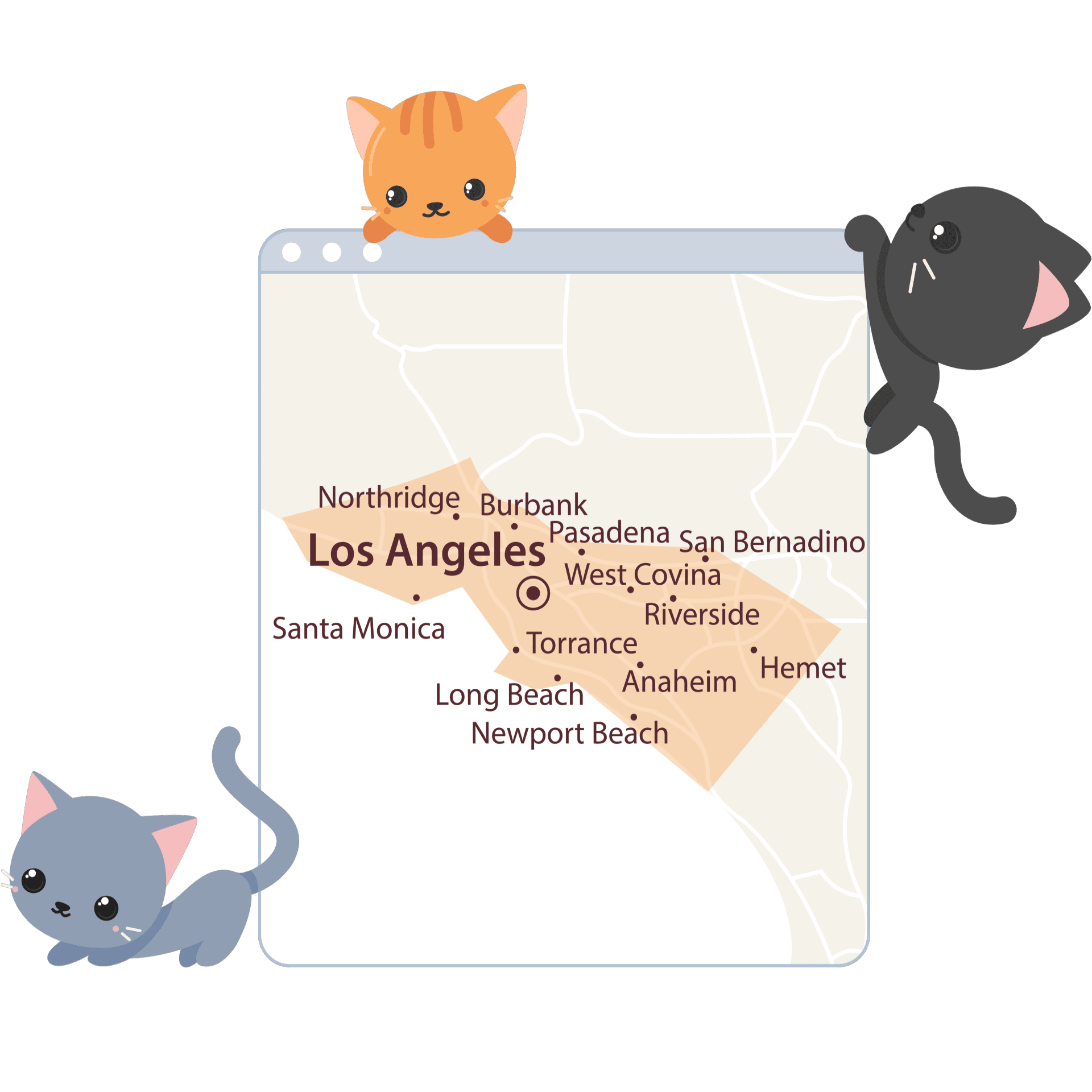 cat sitting services, Service Areas, The Comforted Kitty