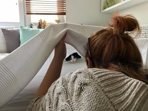 , Customer Concerns: I'm Worried About Giving a Stranger Access to My Home, The Comforted Kitty